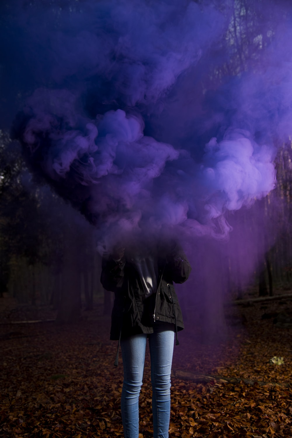 person wearing black jacket and blue jeans holding purple smoke bomb standing on dried tree leaves