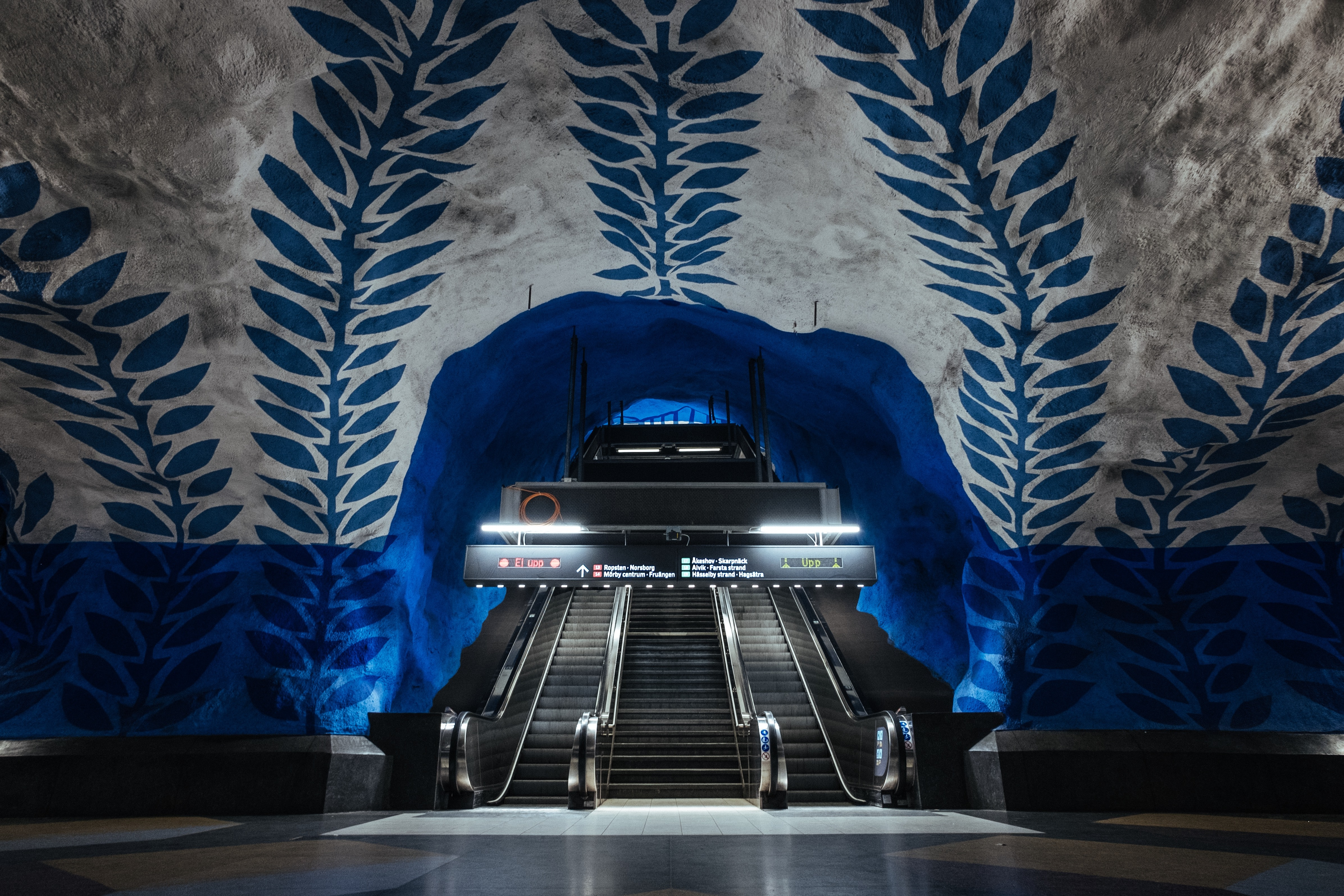 blue and white foliage building interior with escalator