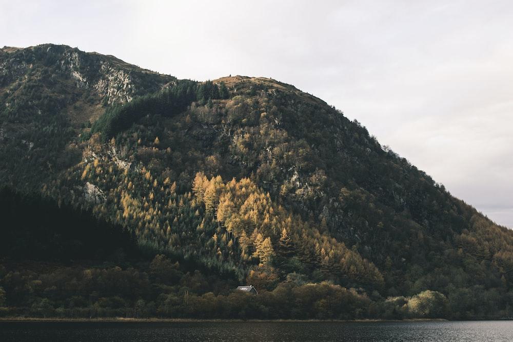 green mountain near body of water
