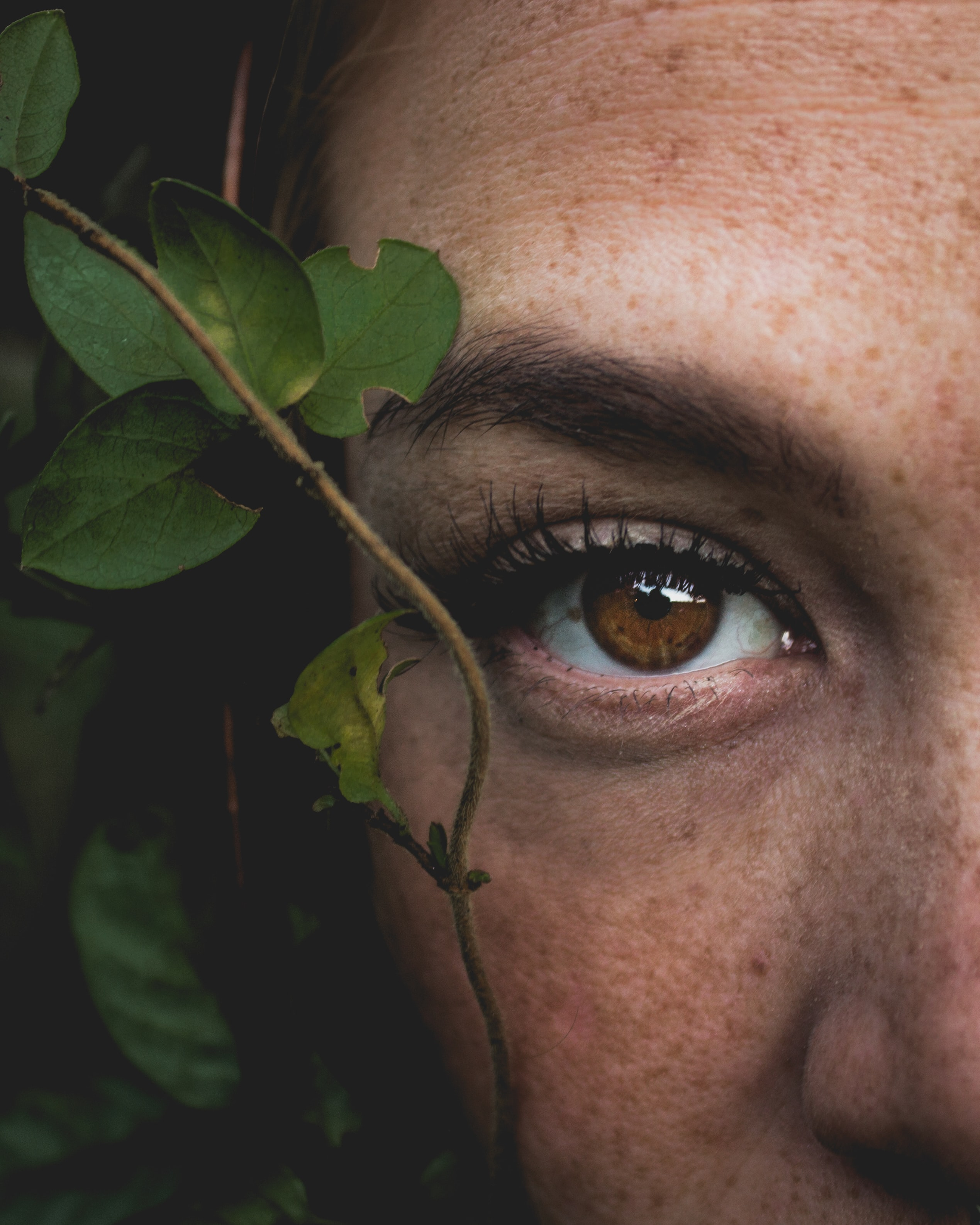 person's right human eye closeup photography