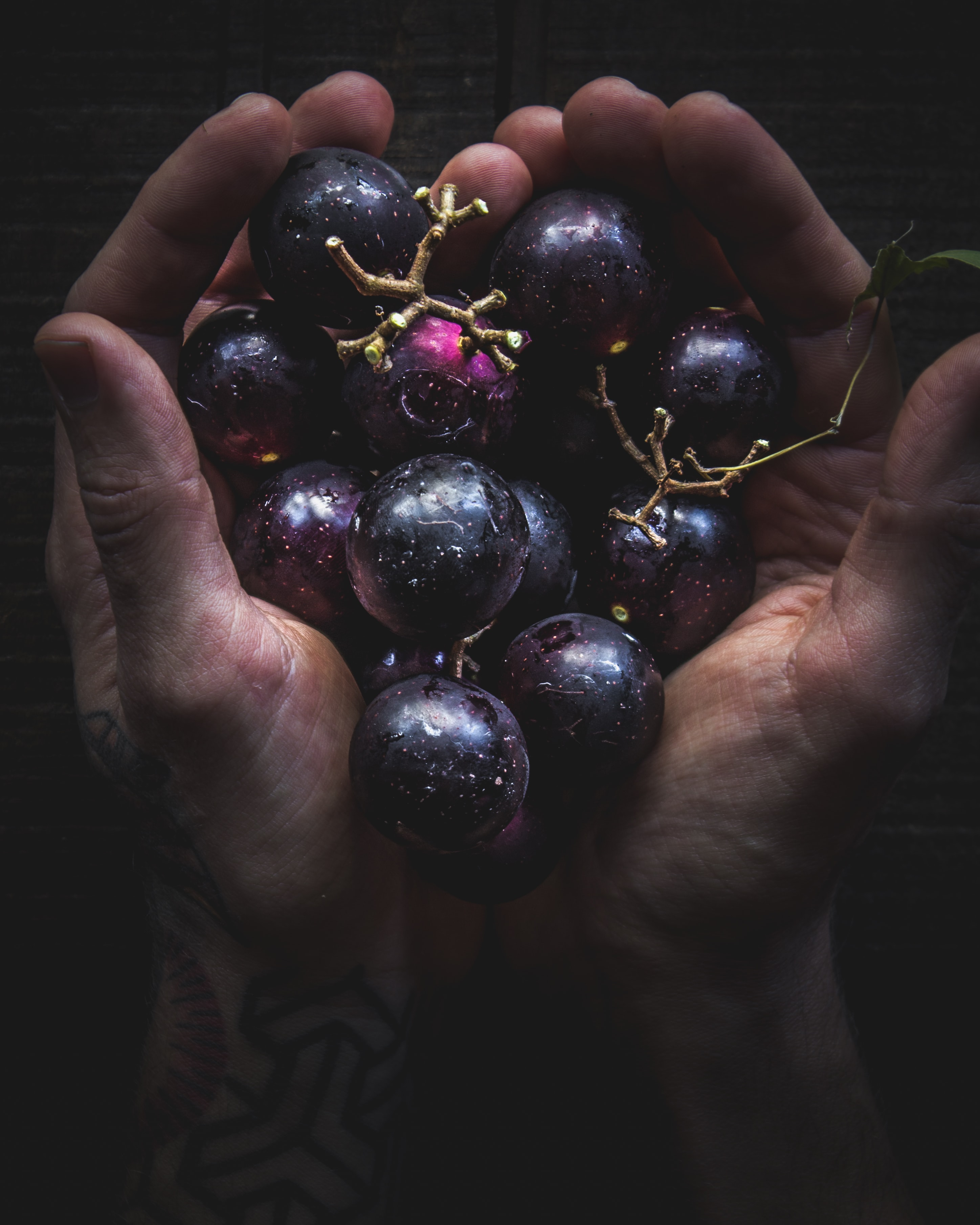 person holding round purple fruits