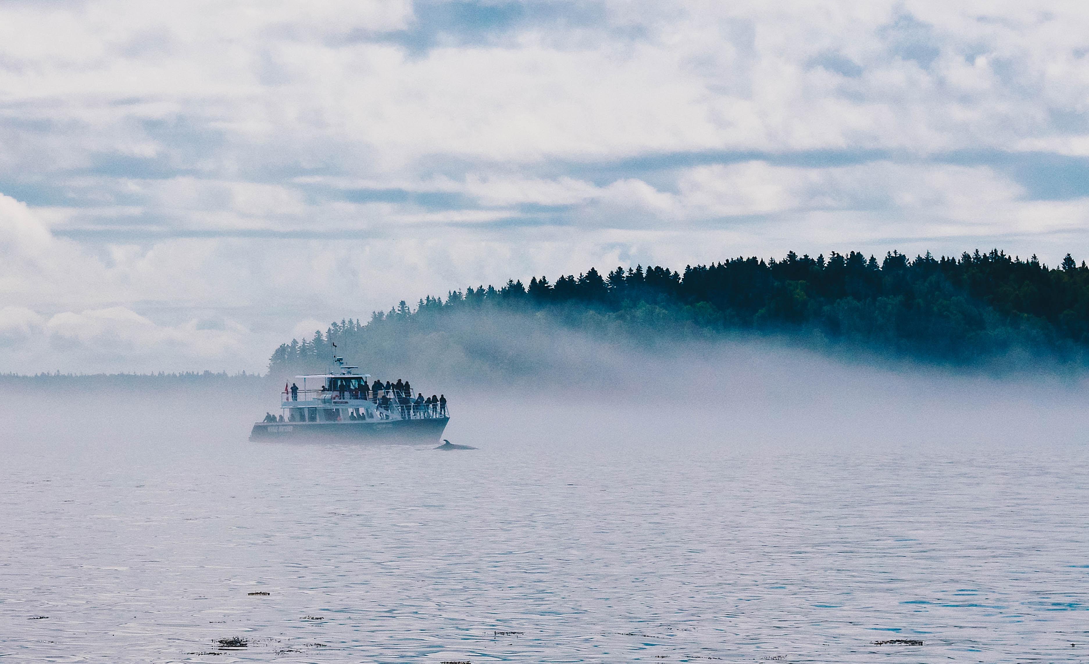 landscape photography of boat sailing near islet