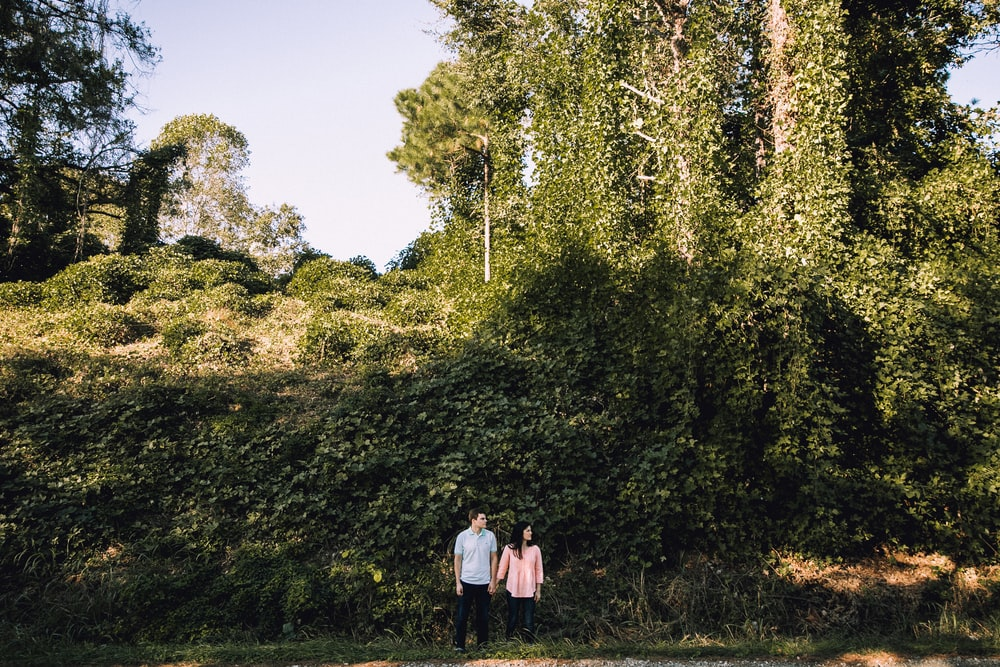woman and man holding hands in front of tree