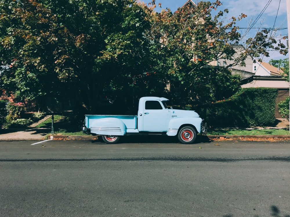 white single cab pickup truck parked near green tree at daytime
