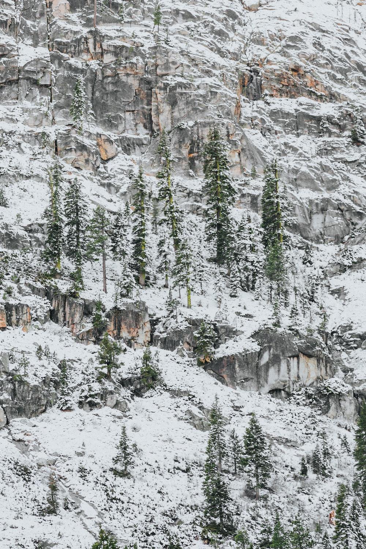 snow studded mountain