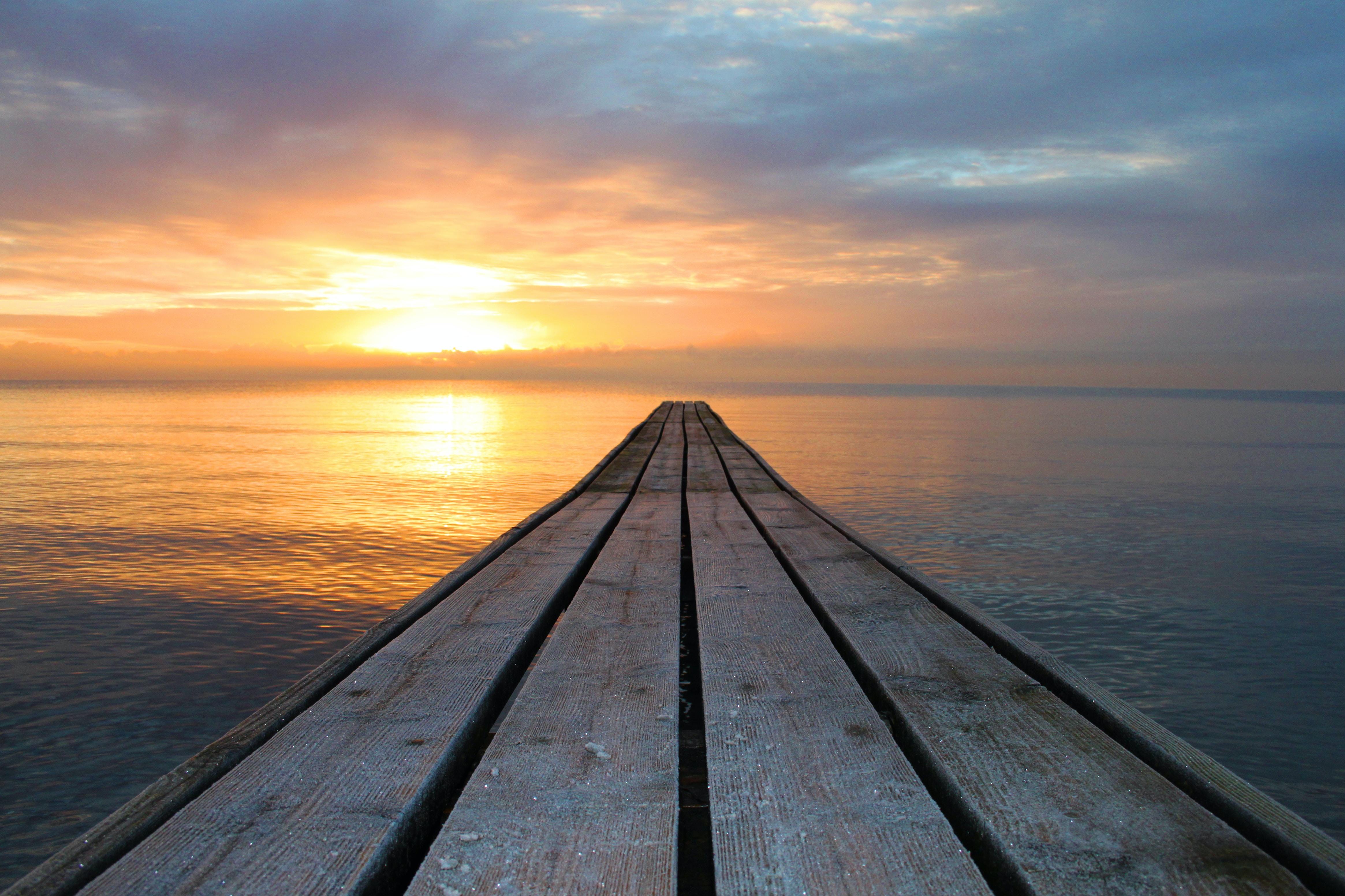 brown wooden dock near ocean during daytime