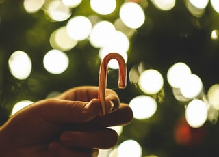 person holding white and red candy cane