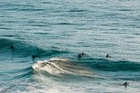 photo of people swimming in sea
