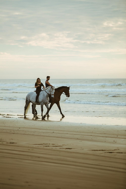 man and woman riding on horse near seashore