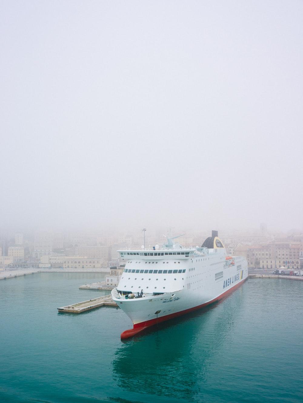 white cruise ship on body of water docking at daytime