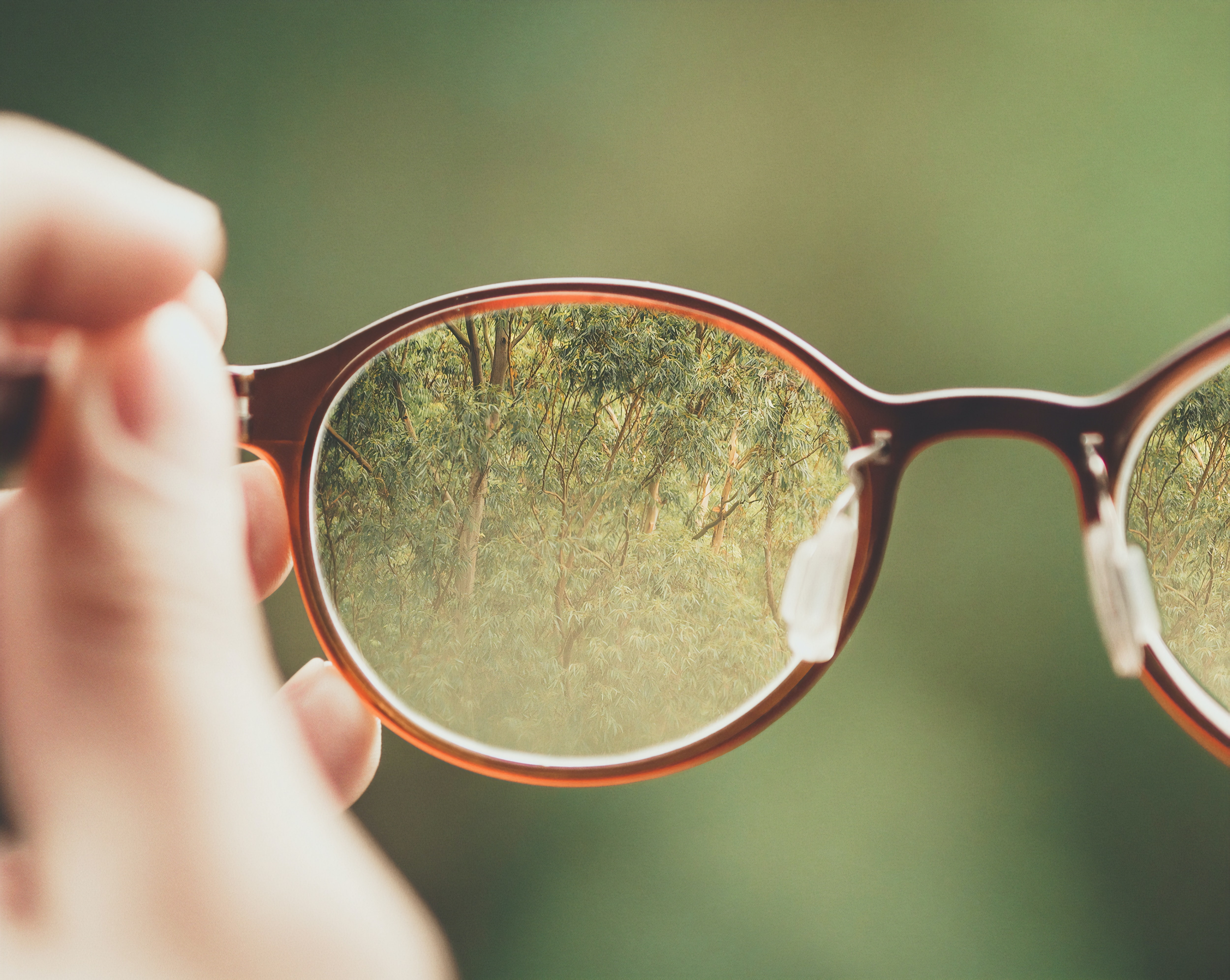 Buy How to eyewear photograph picture trends