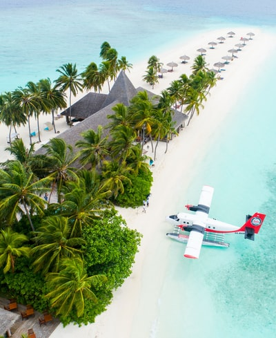 plane parked beside the trees on seashore