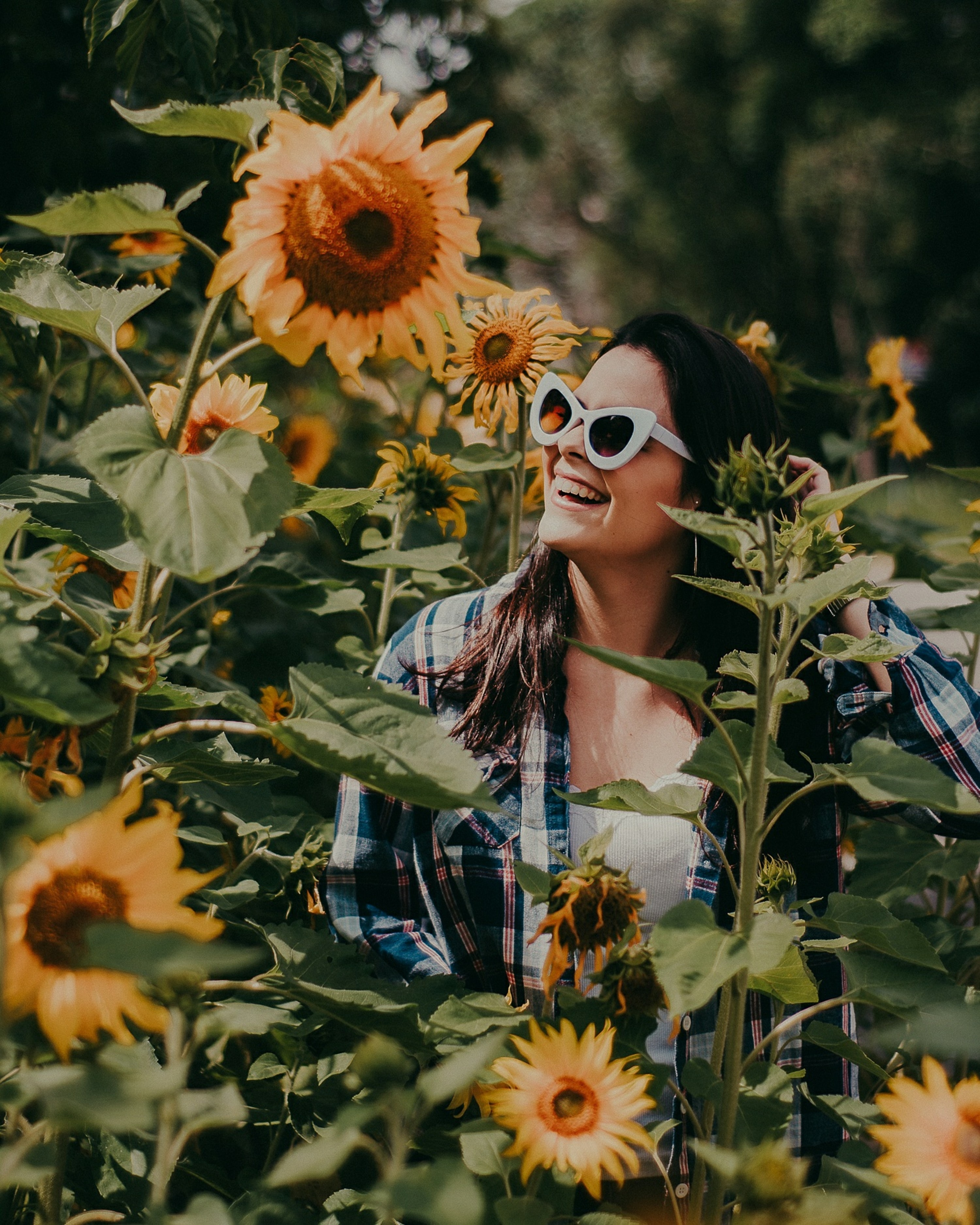 photo of woman surrounded with sunflower