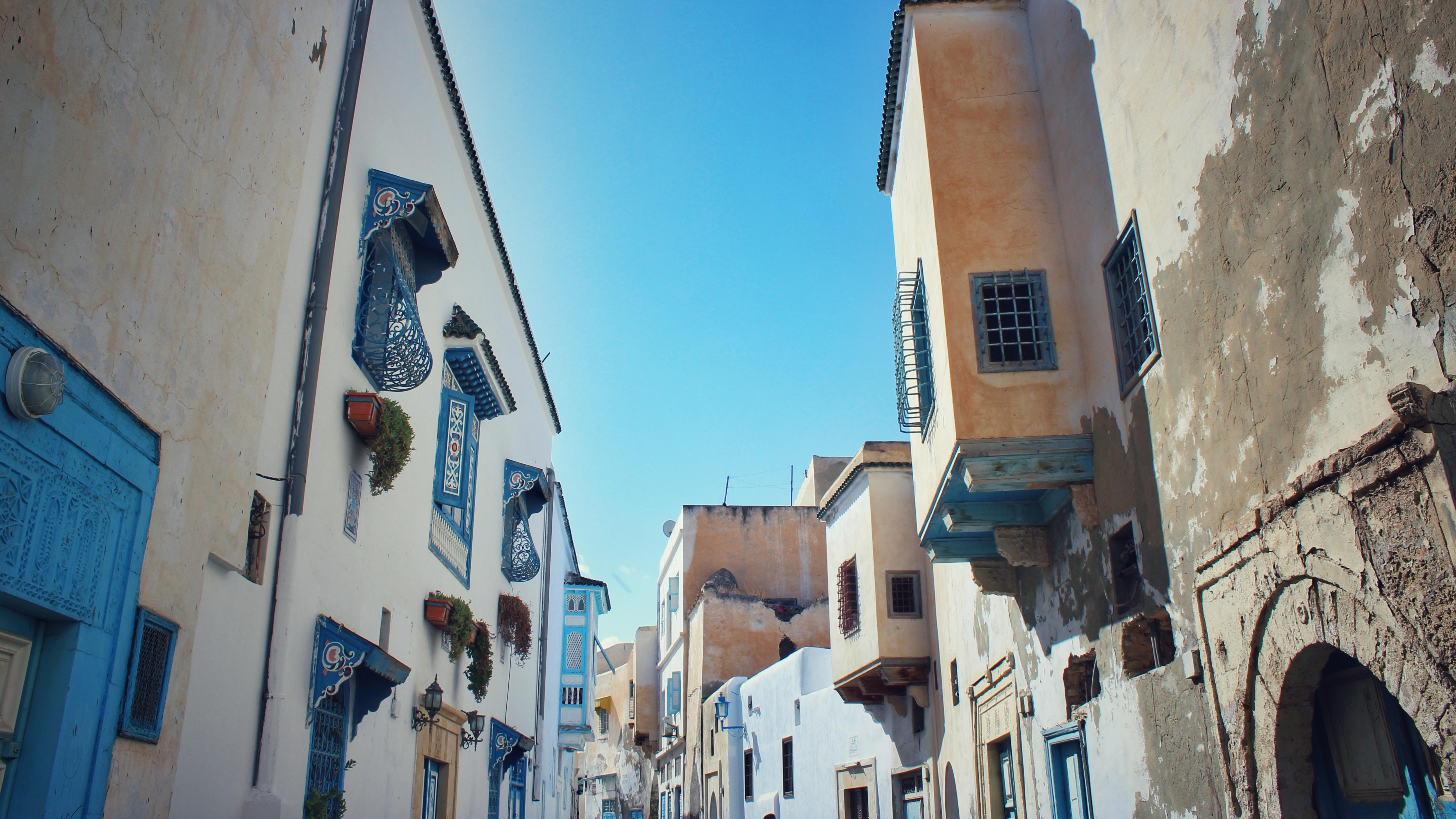 houses under blue sky