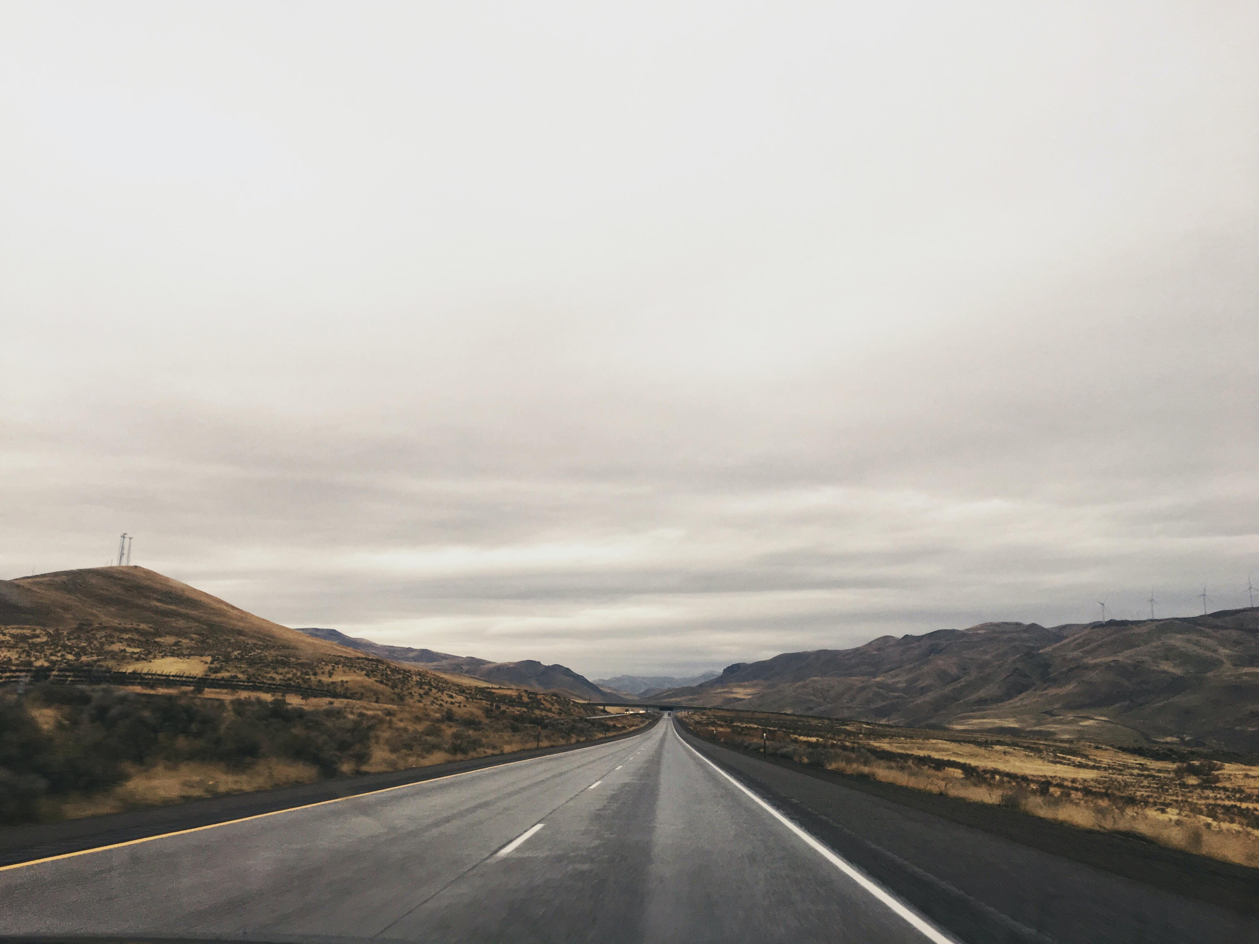 gray asphalt road in between trees at daytime
