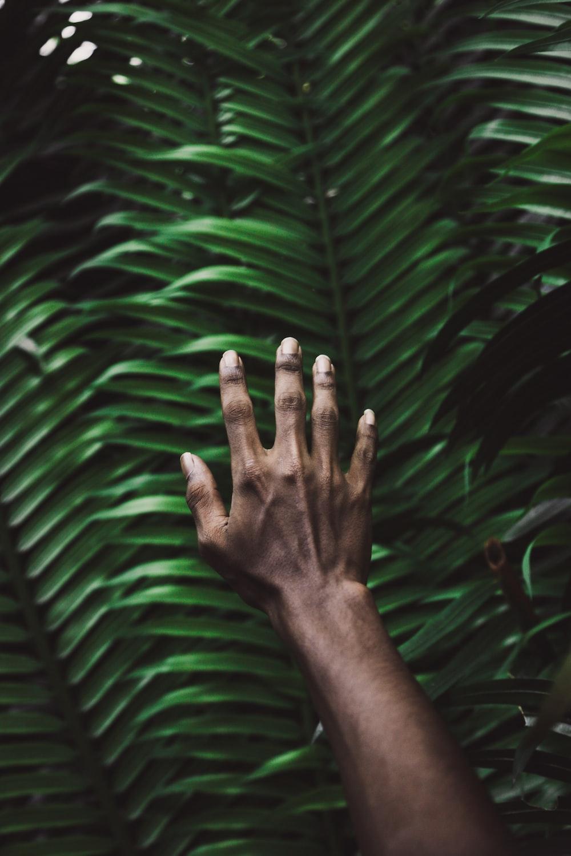 person's right hand