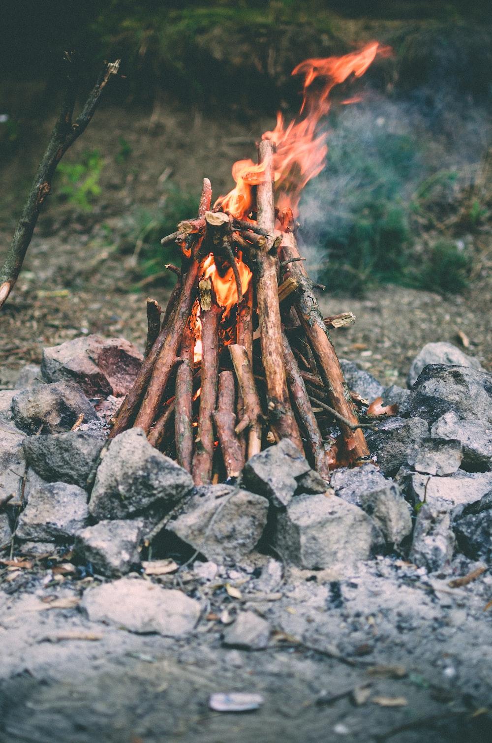 close up photo of bonfire outdoor