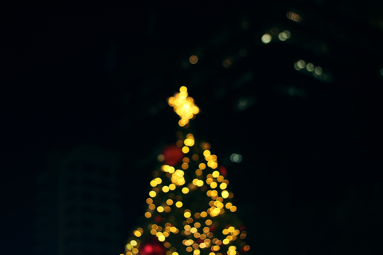 Tree · Christmas · Decor · 4