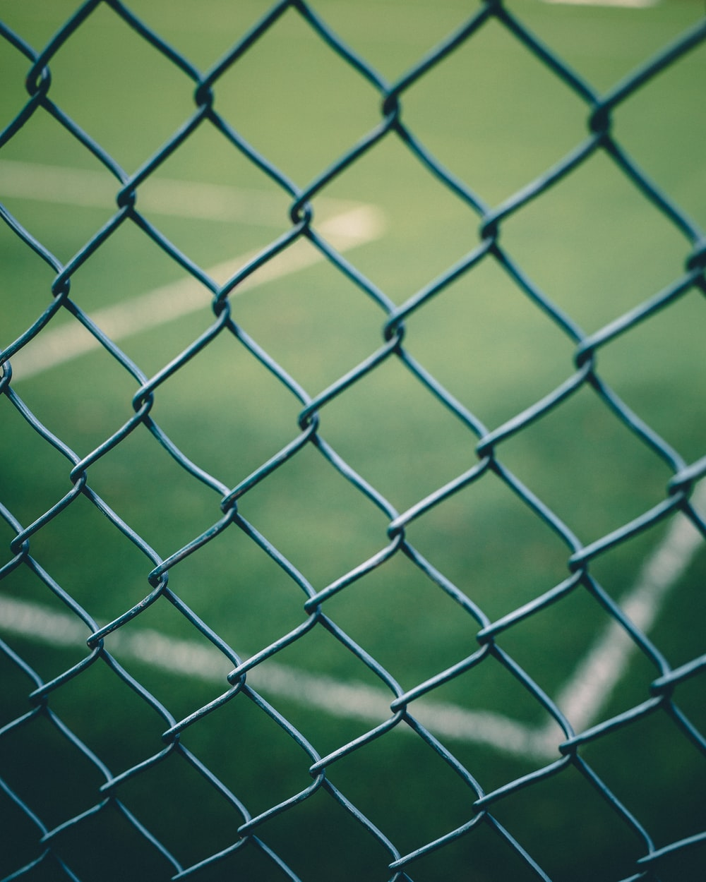 close-up photography of fences