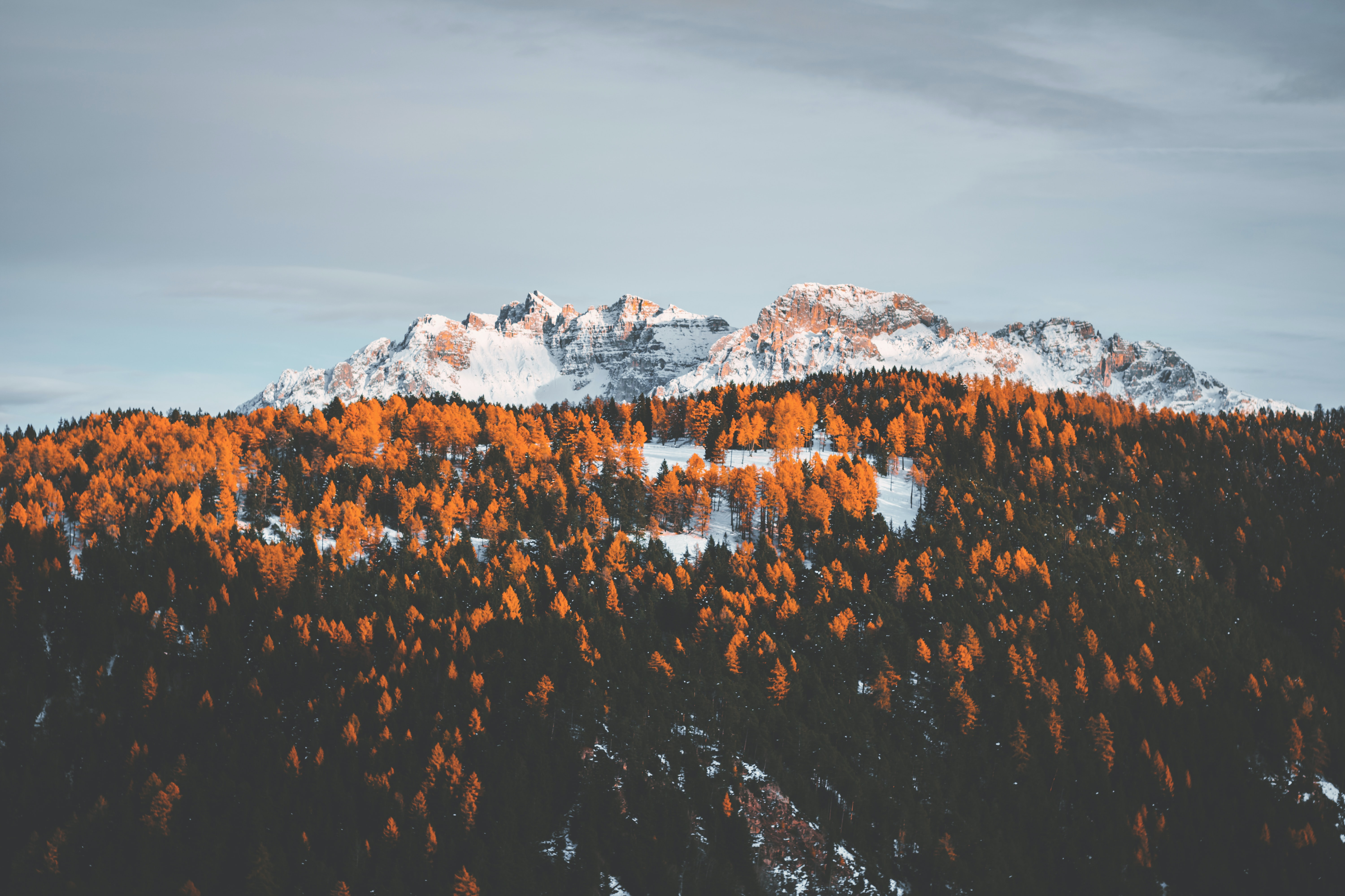 mountains covered with snow surrounded with trees