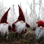 Lutin de Noël : tout savoir sur cette tradition ancestrale !