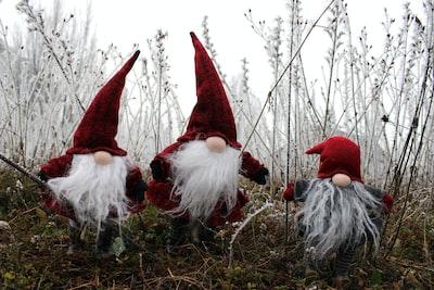 three christmas gnome on grass elf teams background