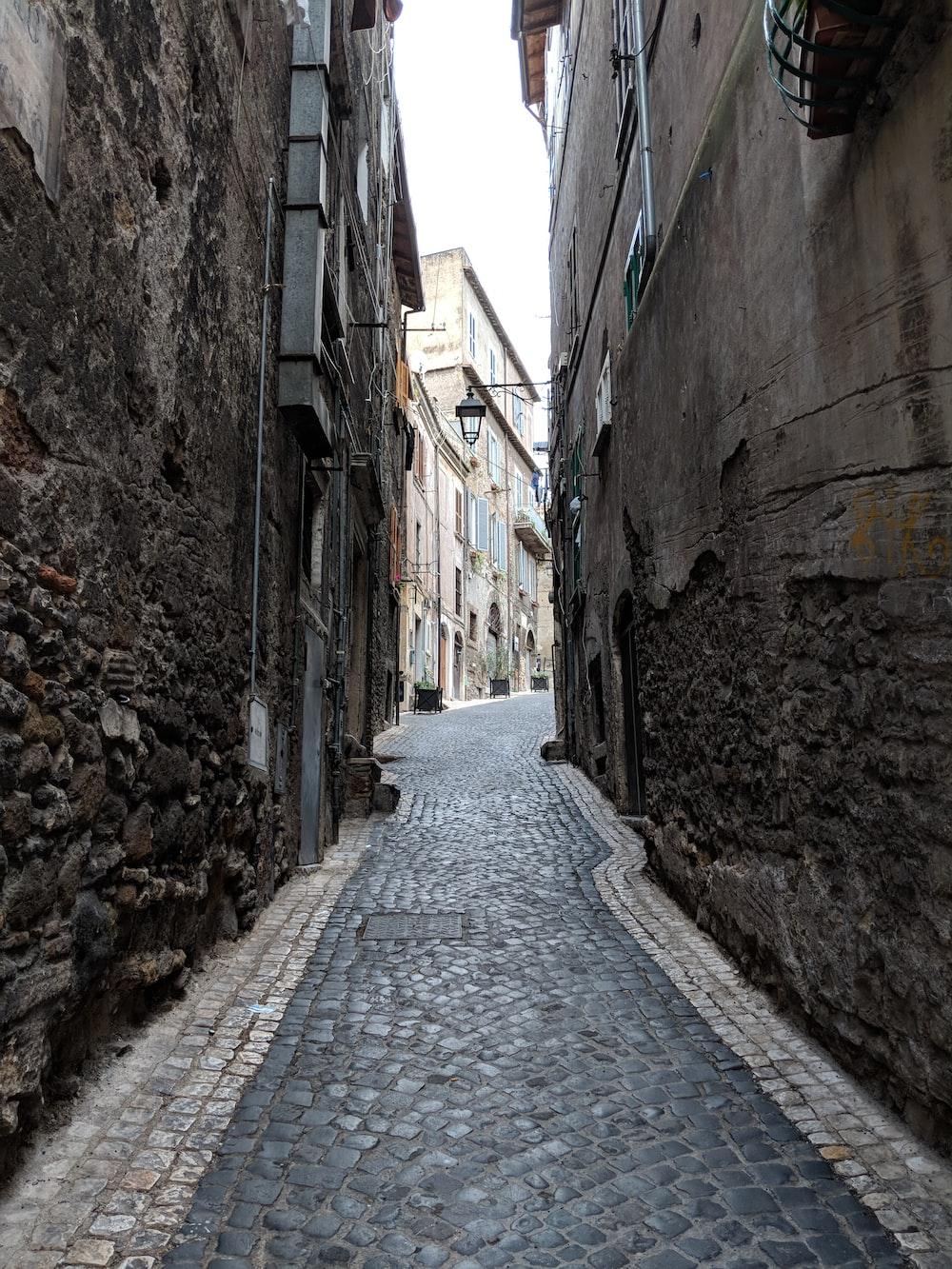 black bricked pavement between buildings