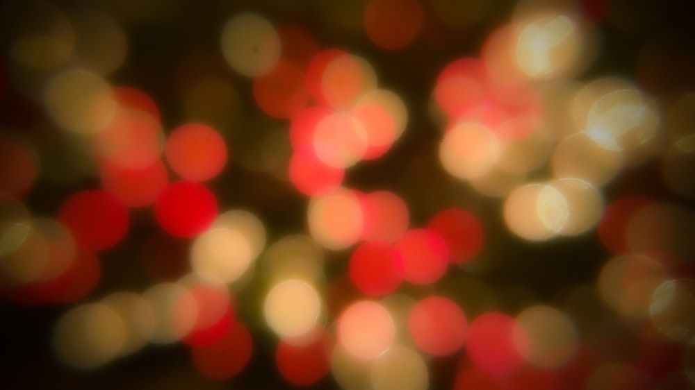 red and white bokeh lights