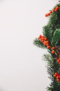last christmas christmas-poetry-2020 stories