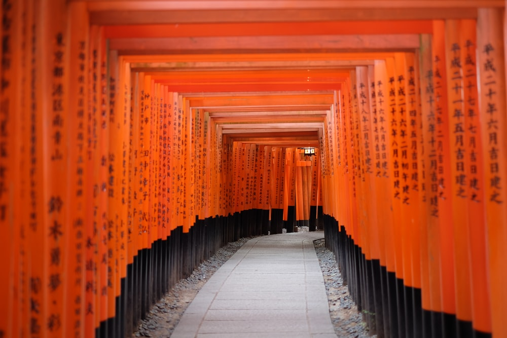 photo of red and black pathway passage