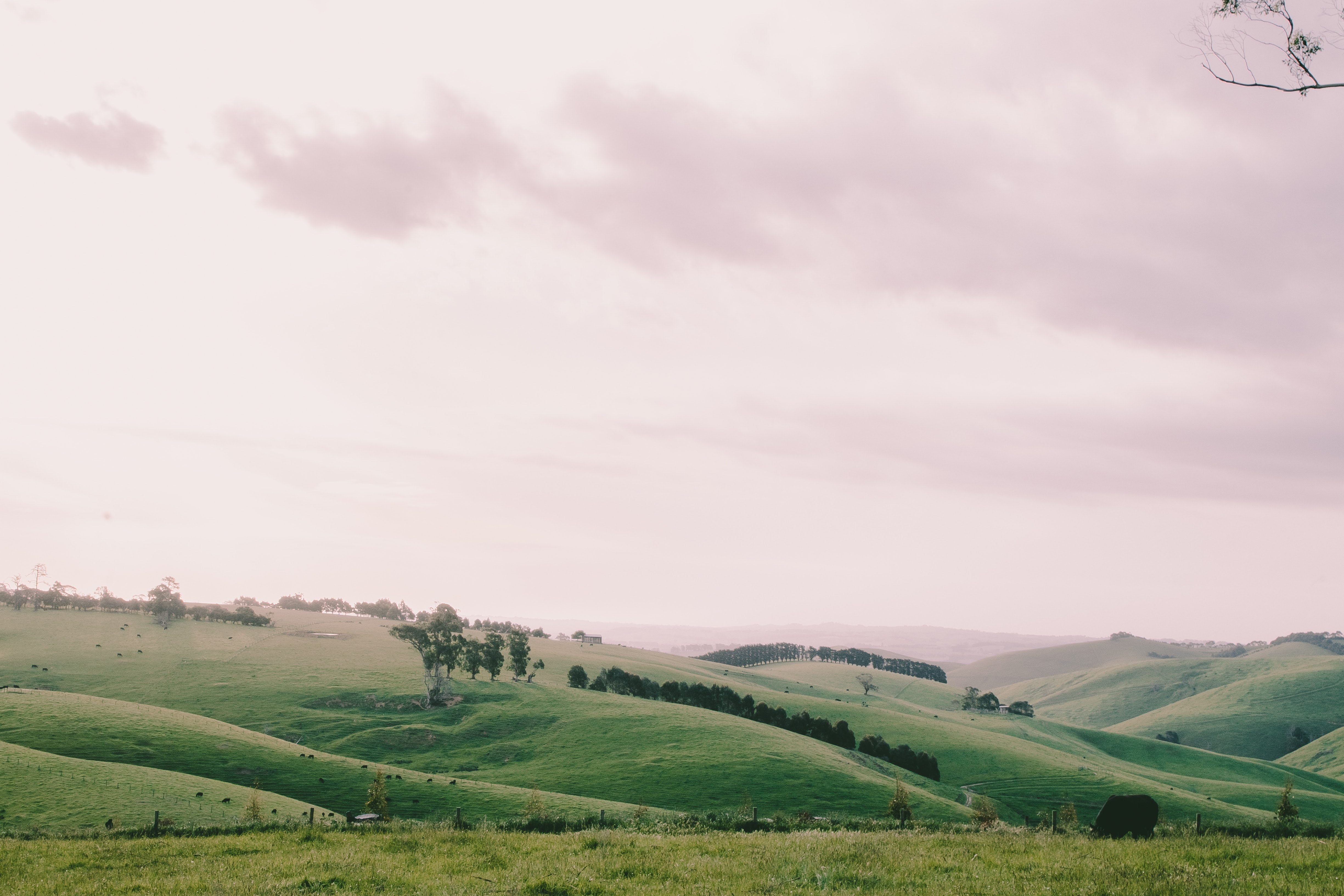 green hill and field under white clouds during daytime
