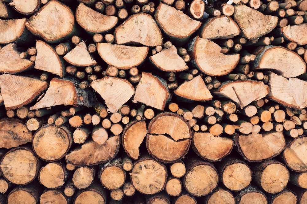 closeup photography of firewood