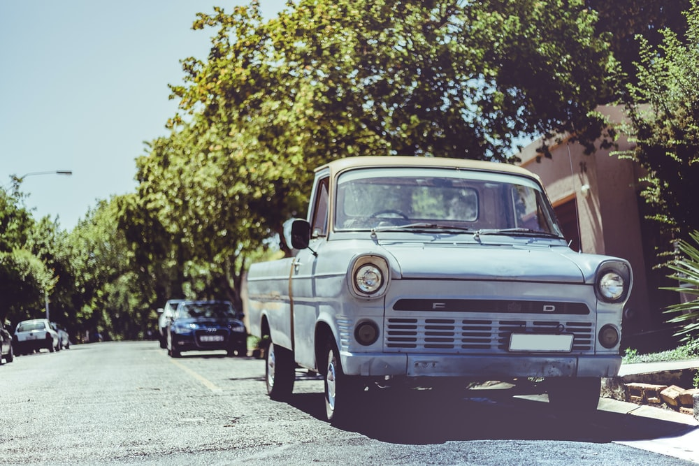 white pickup truck near green leafed plant