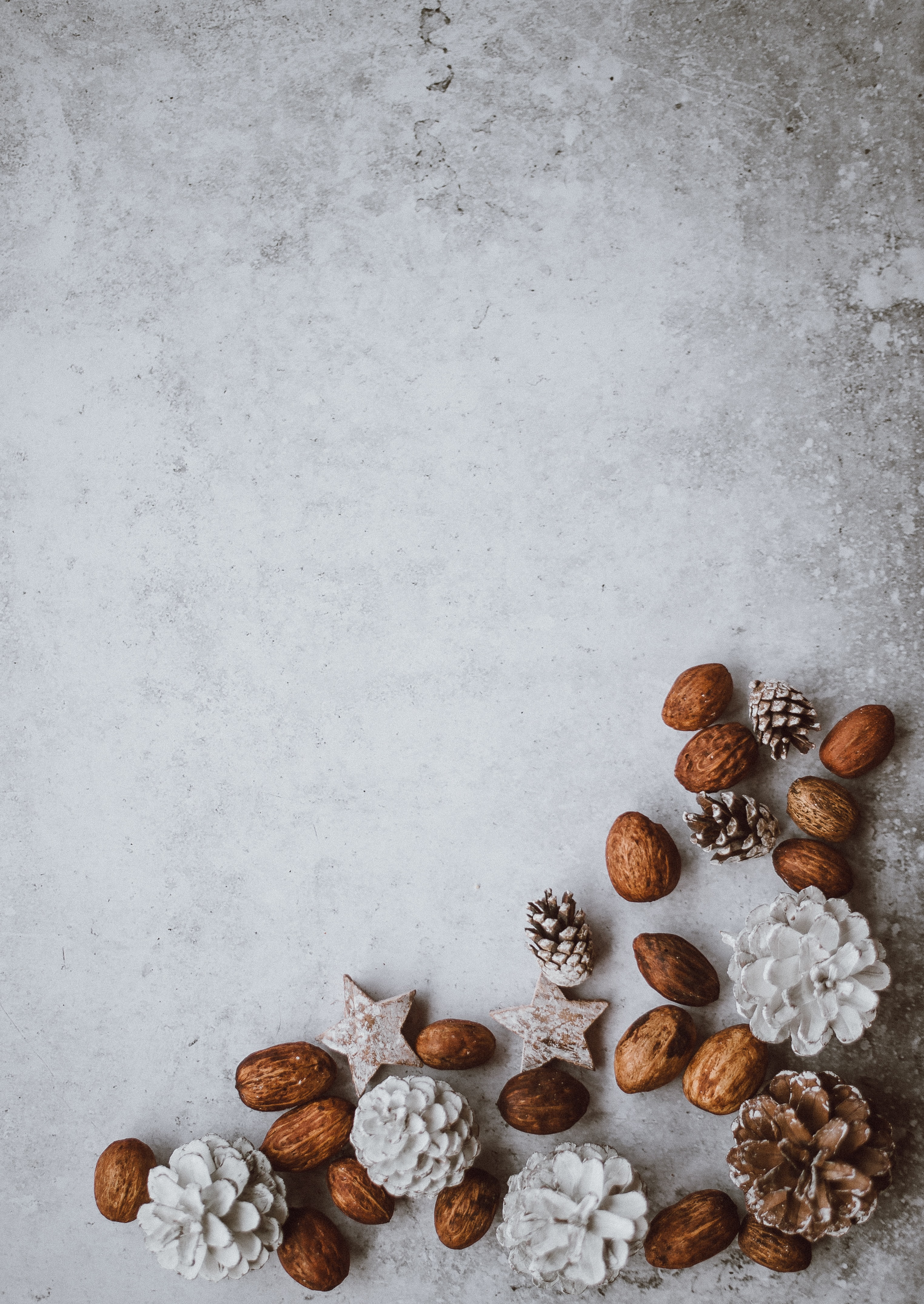 brown nuts and pinecone lot