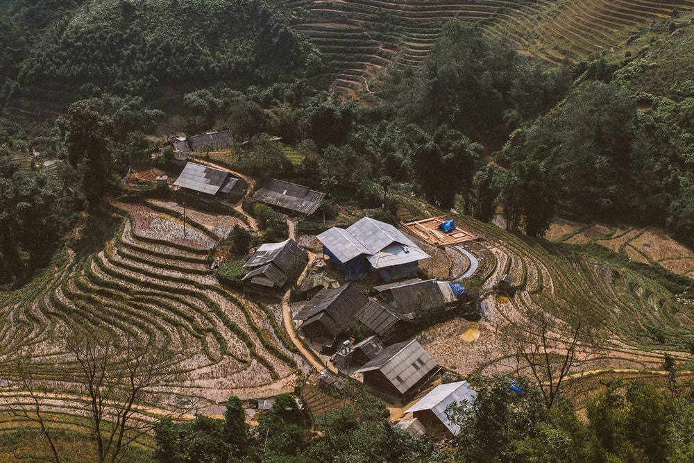 aerial view photo of house surrounded by green trees