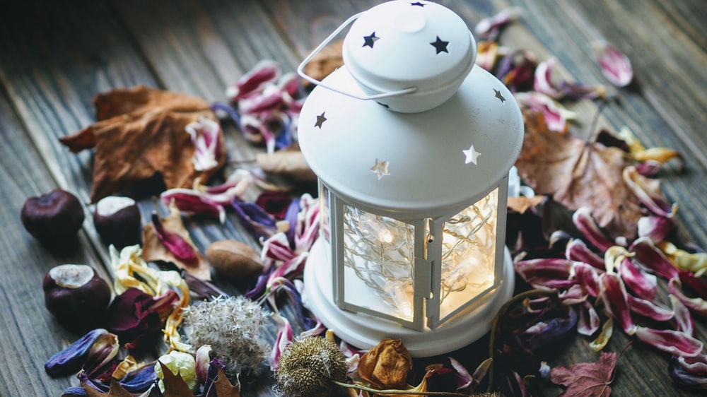 white candle lantern surrounded petals