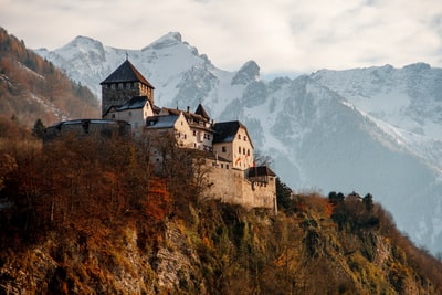 castle on mountain surrounded by trees liechtenstein zoom background