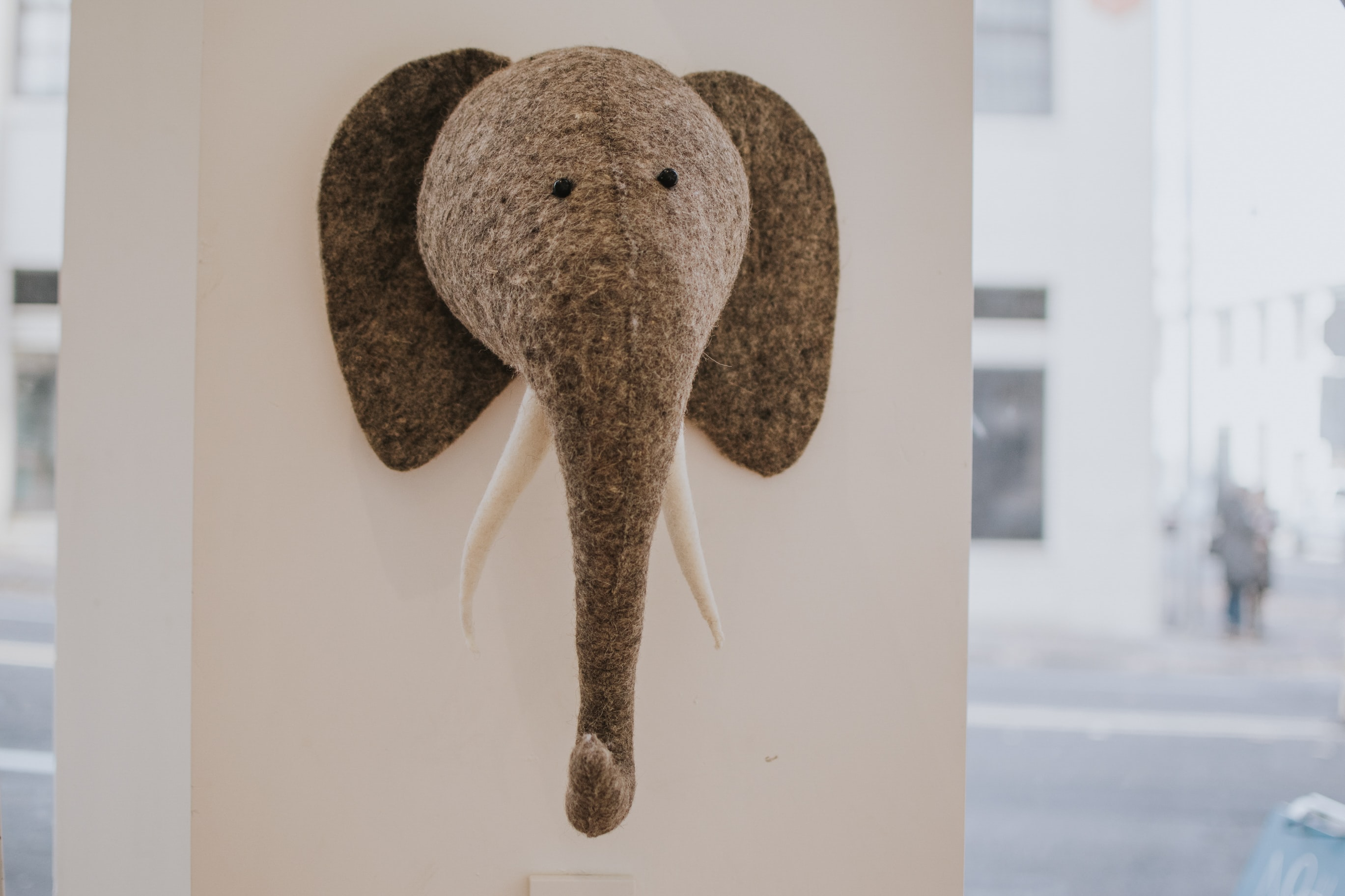 gray elephant head figure hanging on wall
