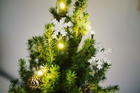 shallow focus photography of green Christmas tree with white snowflakes decor