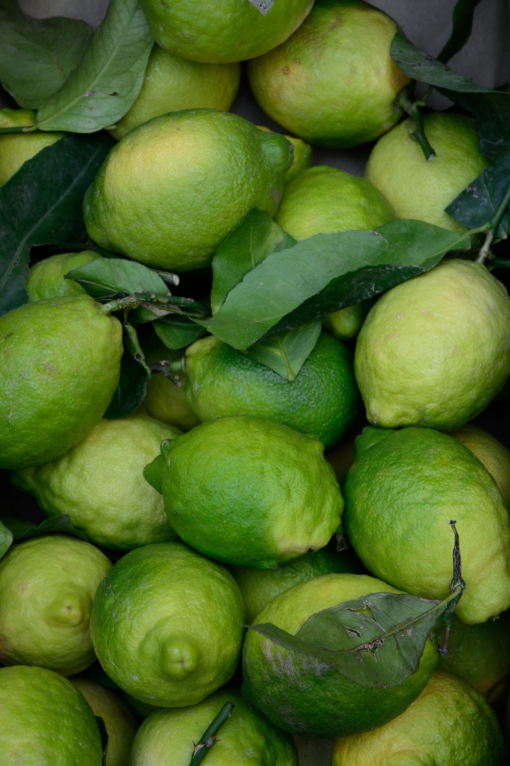 bunch of green guavas