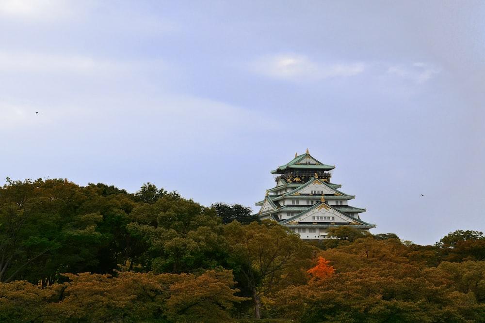 white pagoda surrounded trees