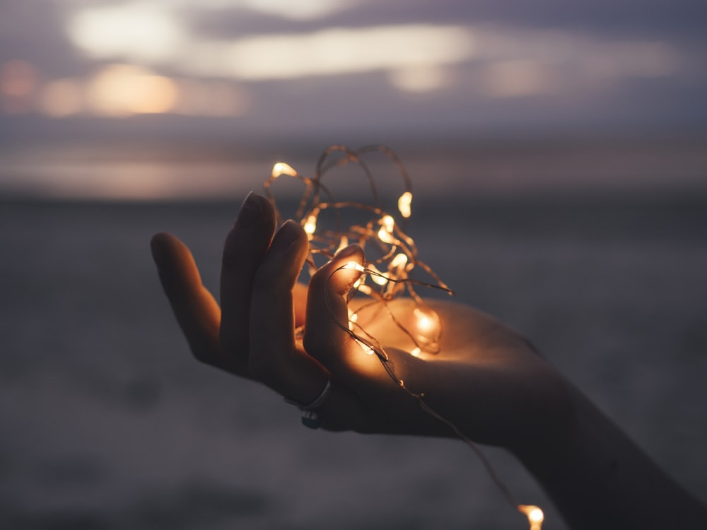 selective focus photography of person holding lighted brown string light