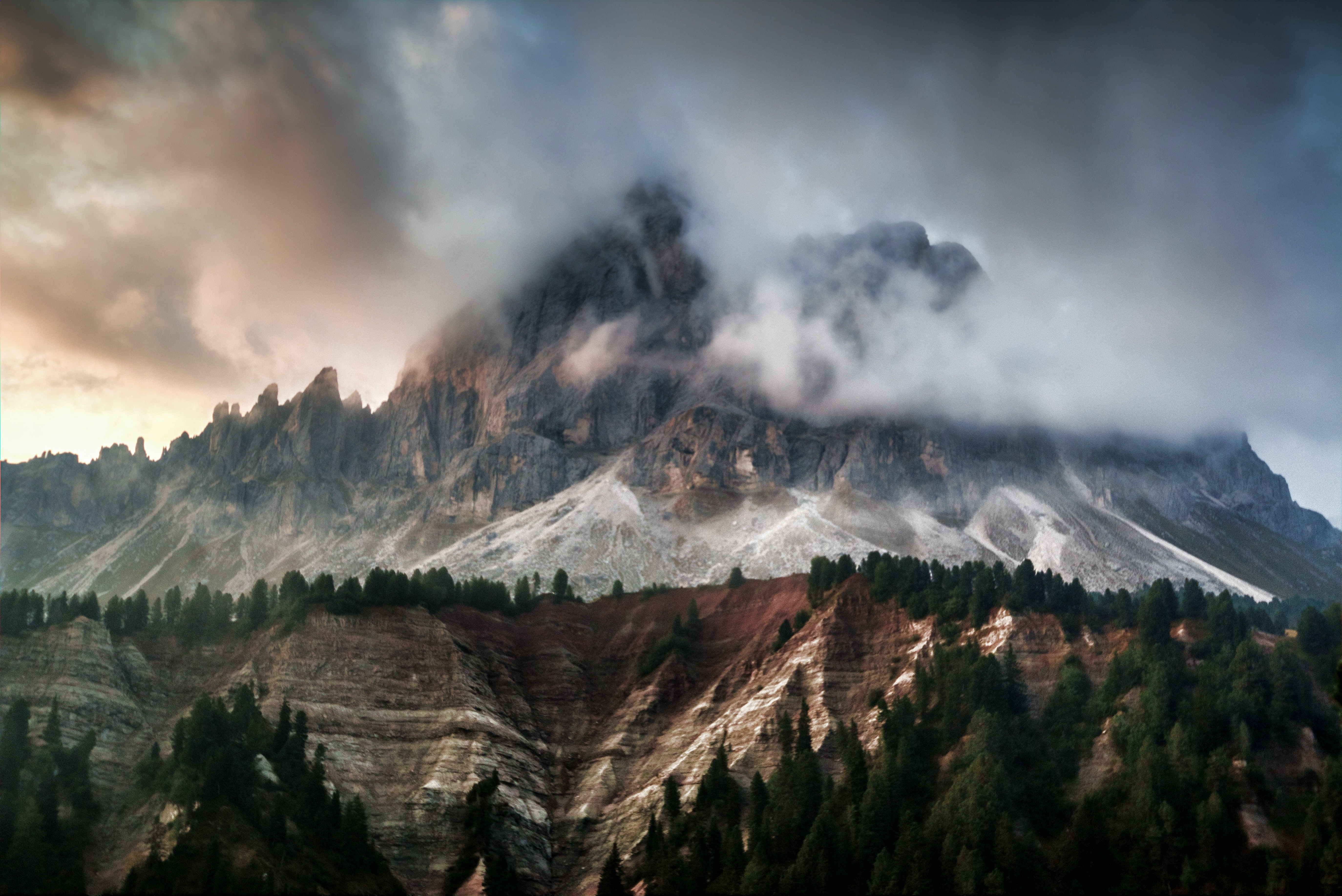 fogy mountain with green pine trees