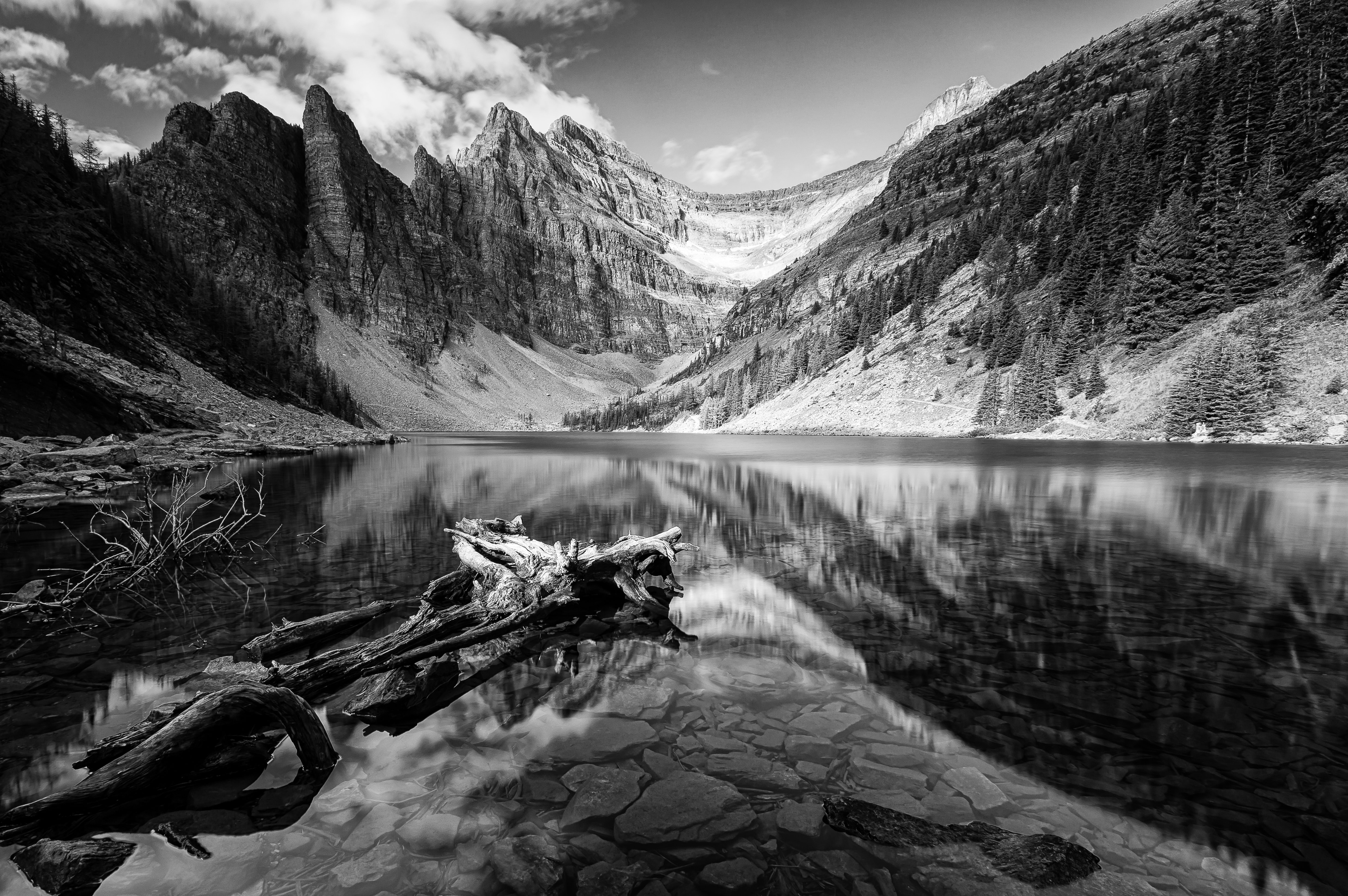 grayscale photo of calm body of water