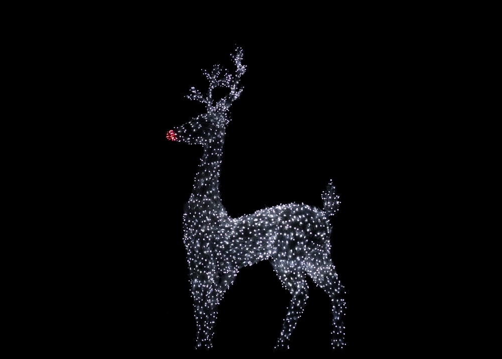 white and red deer illustration