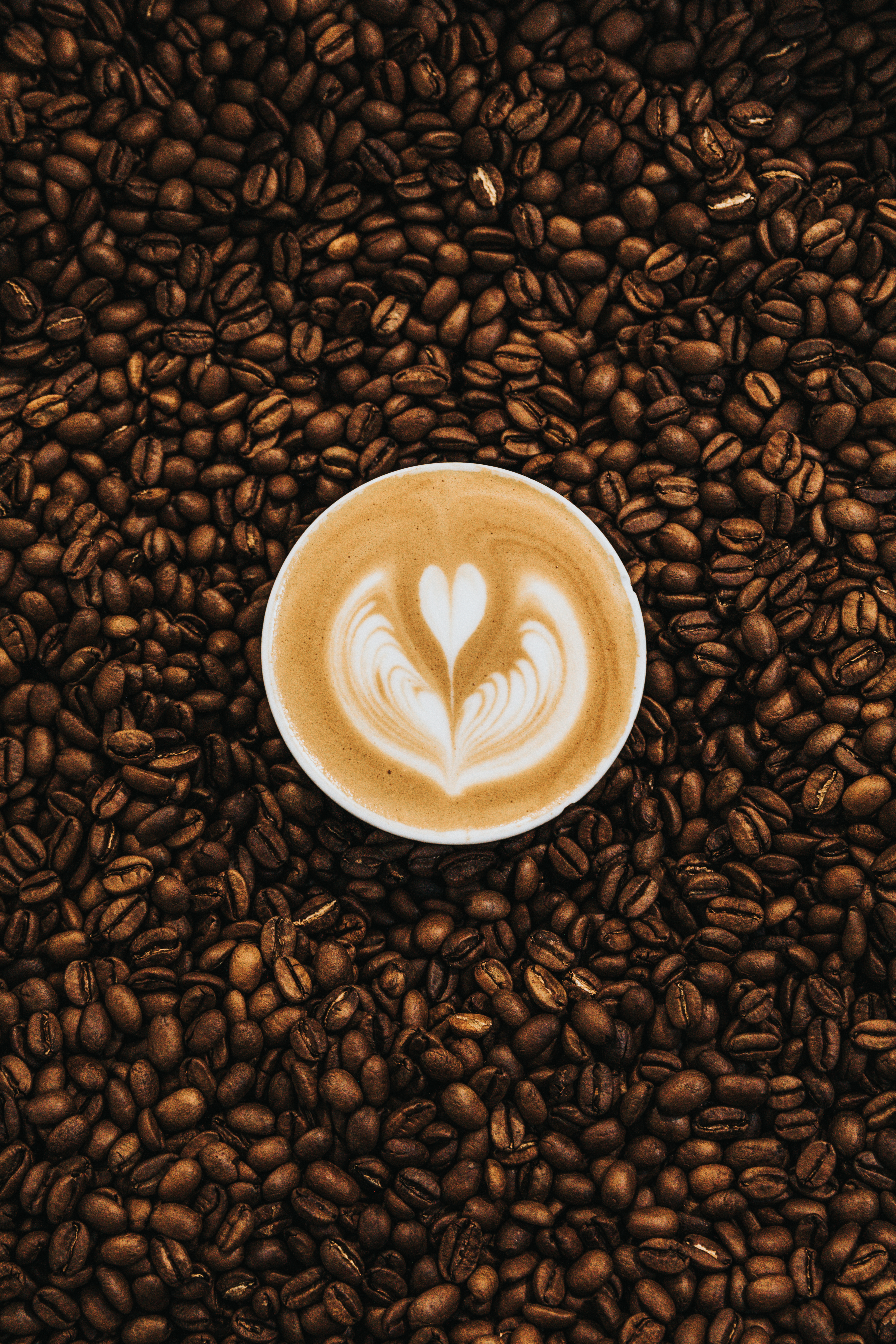 100  coffee cup pictures  hd