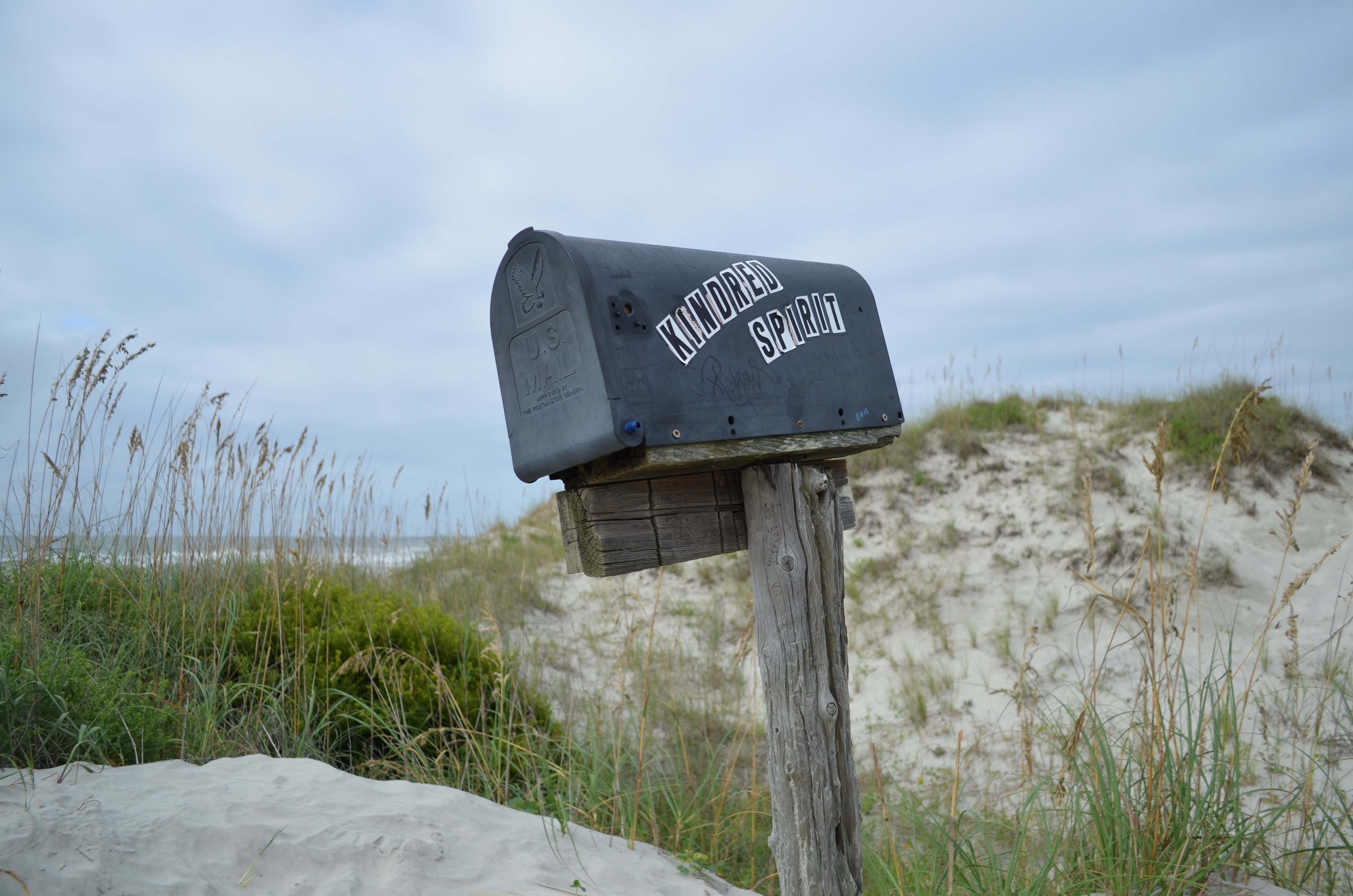 shallow focus photography of mailbox surrounded by grass