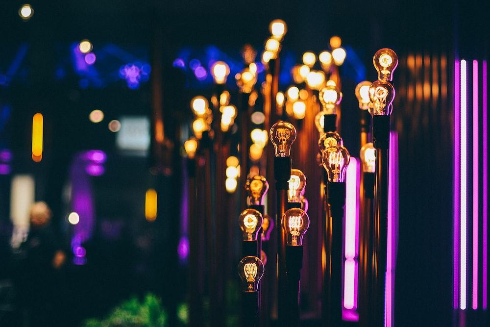 shallow focus photography of yellow light bulbs