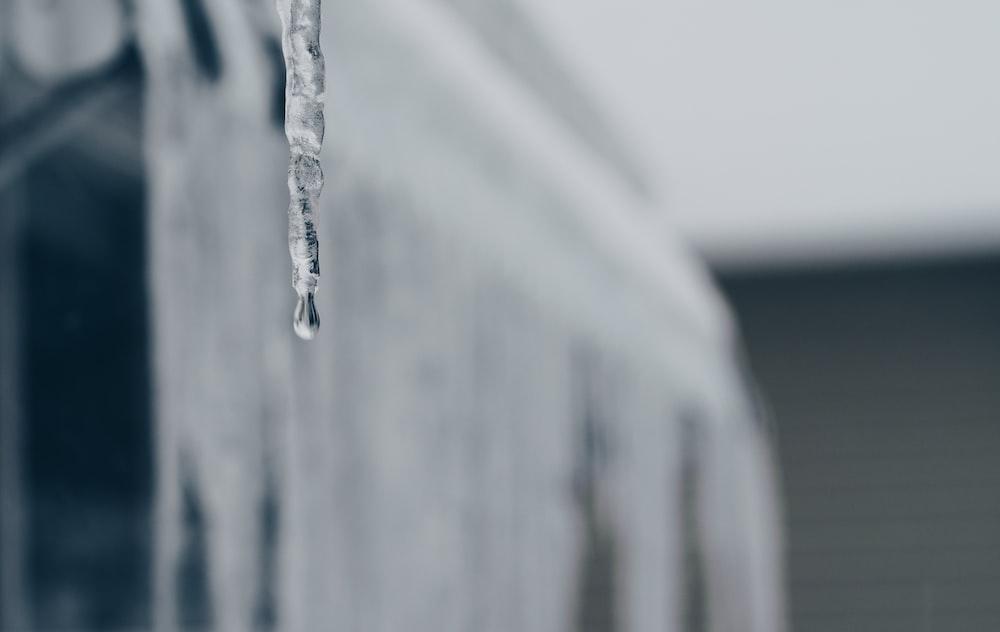 selective focus photograph of waterdrop