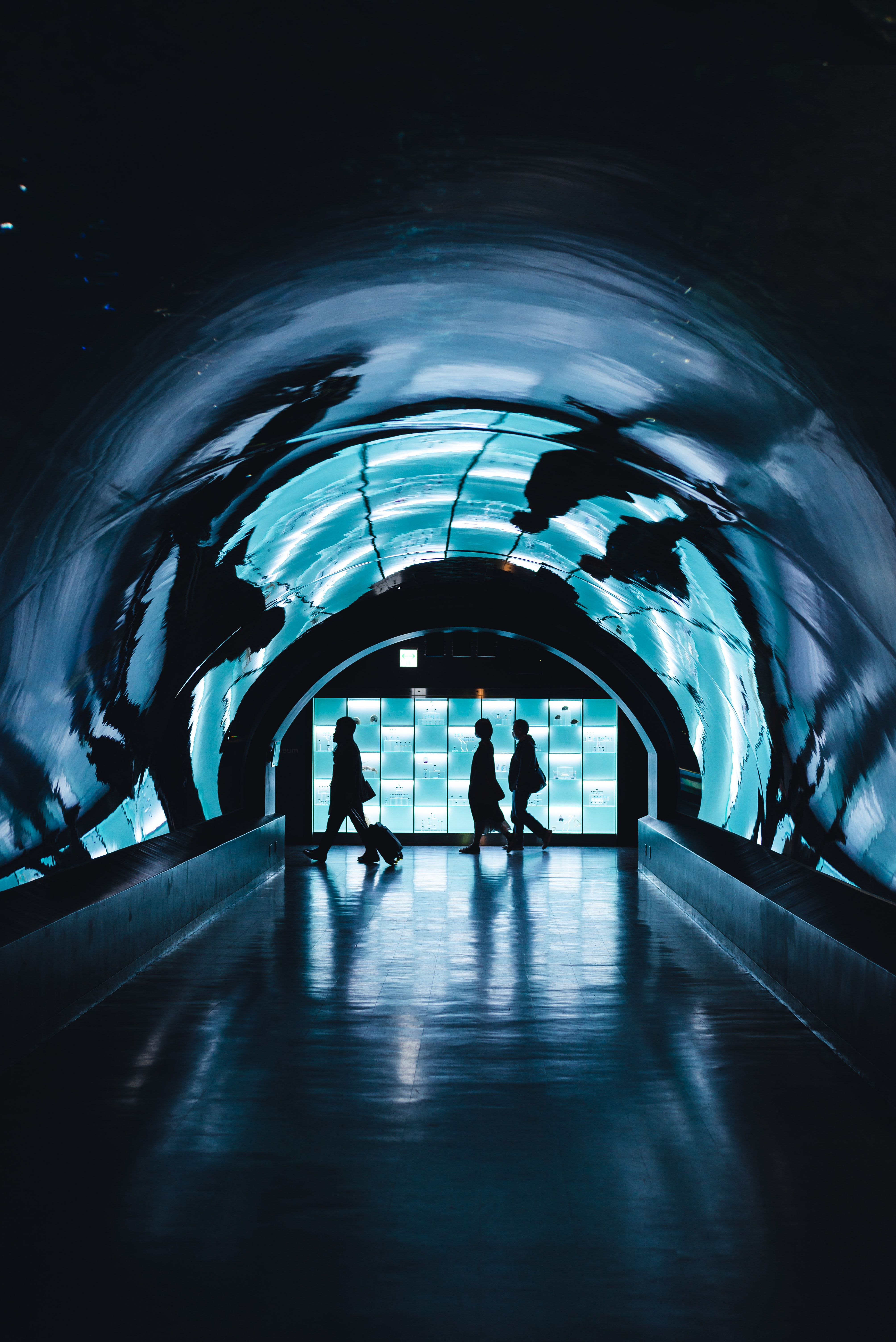 silhouette of three person walking near tunnel